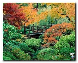 Botanical Gardens 71