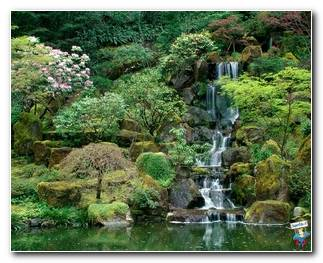 Botanical Gardens 72