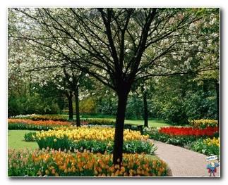 Botanical Gardens 73