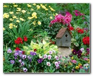 Botanical Gardens 81