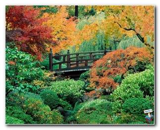 Botanical Gardens 9