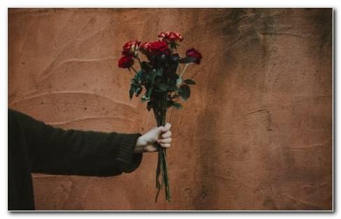 Bouquet Of Flowers HD Wallpaper New