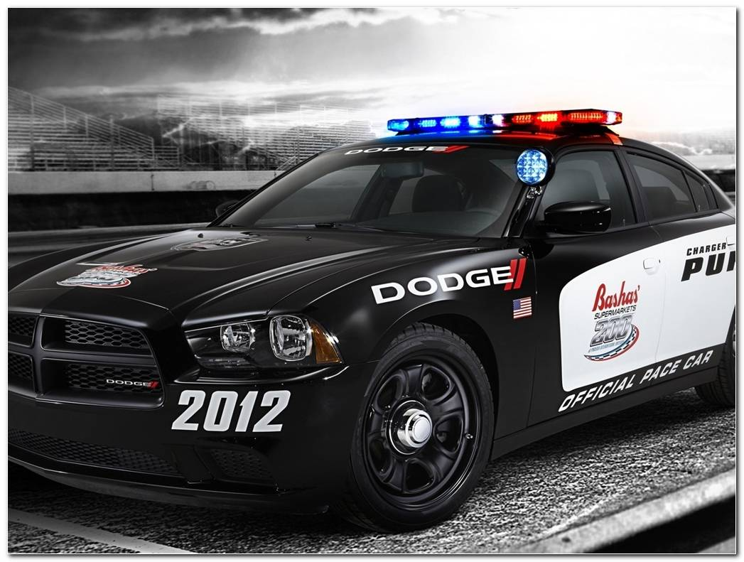 Bugatti Veyron Police Car 4335 Hd Wallpapers In Cars Imagescicom 1024x768