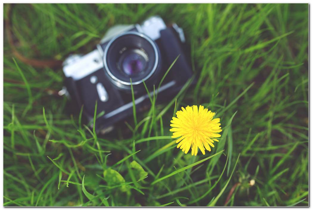 Camera Photography Vintage Wallpaper