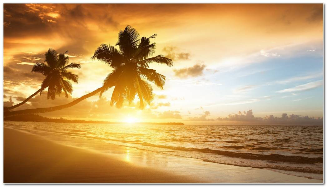 Caribbean Sunset Beach Nature Wallpaper Background