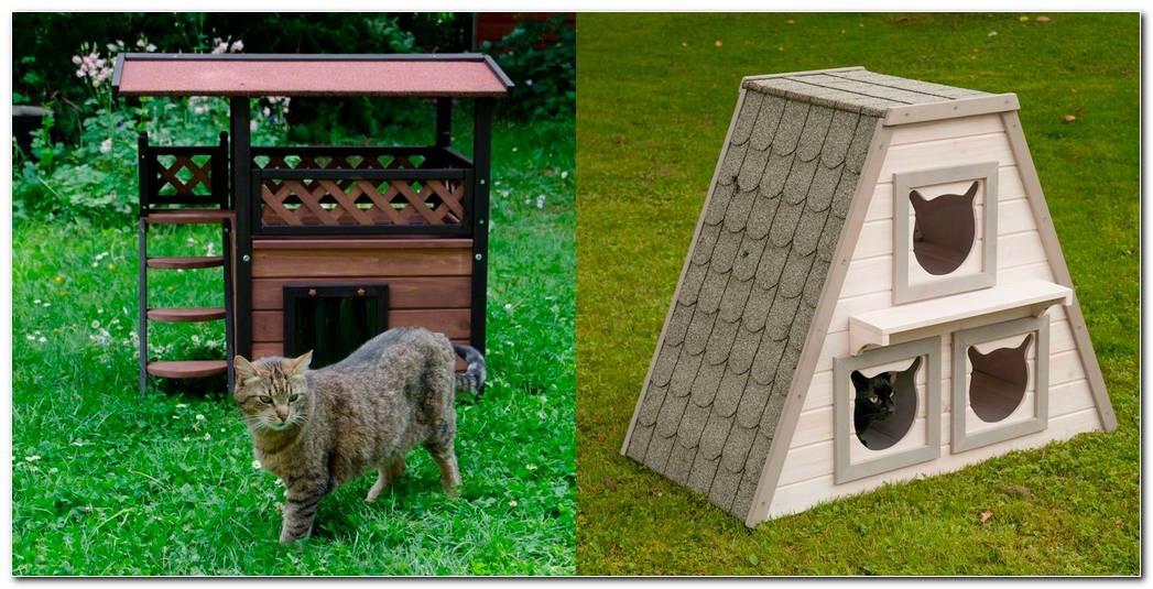 Casas De Exterior Para Gatos