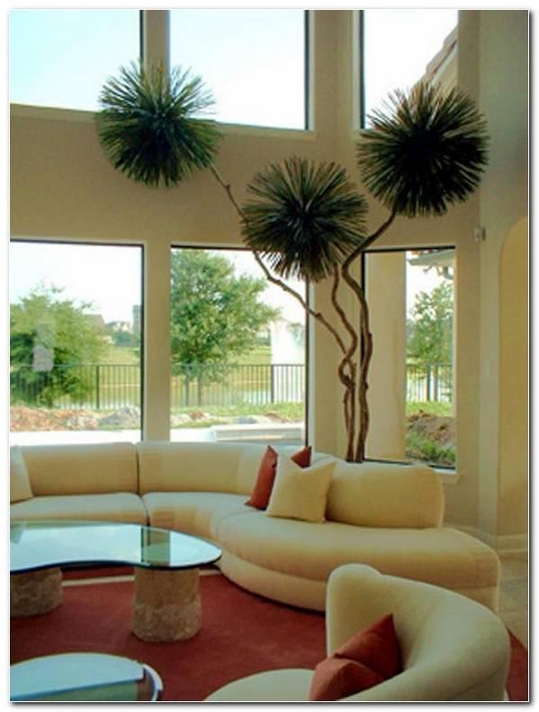 Casas Interiores De Una Planta
