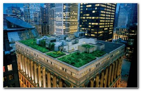 Chicago City Hall Green Roof HD wallpaper