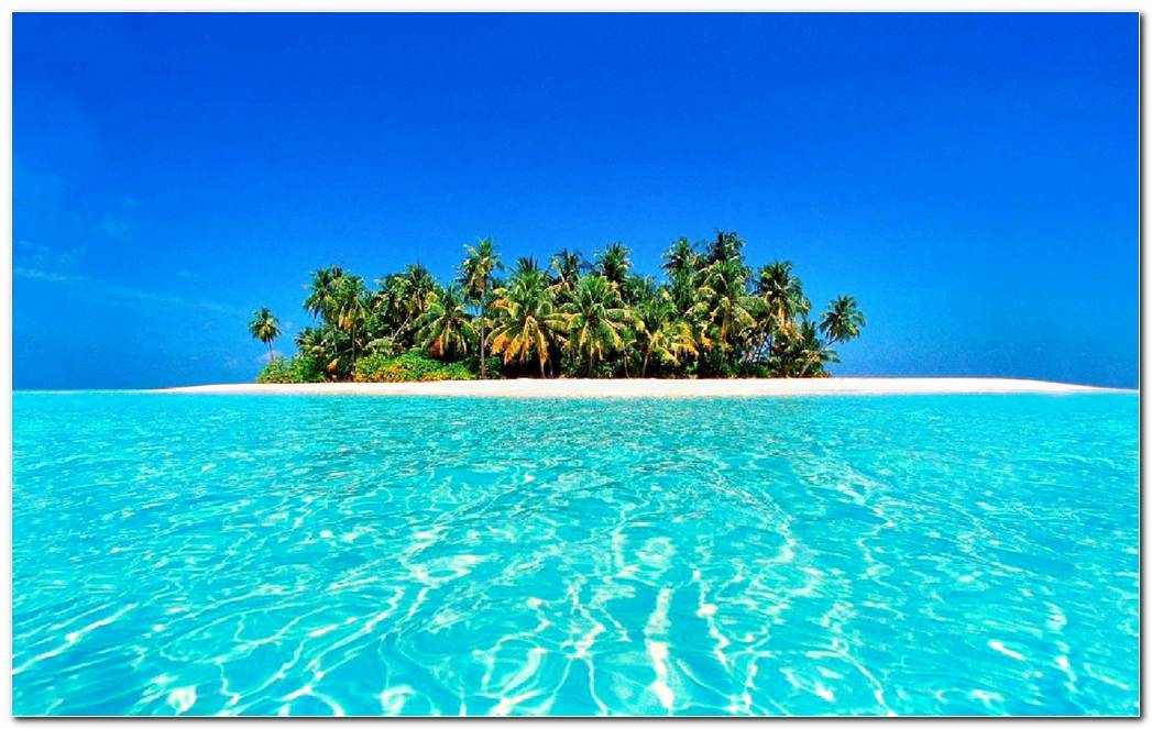 Cool Beach Tropical Nature Wallpaper Background