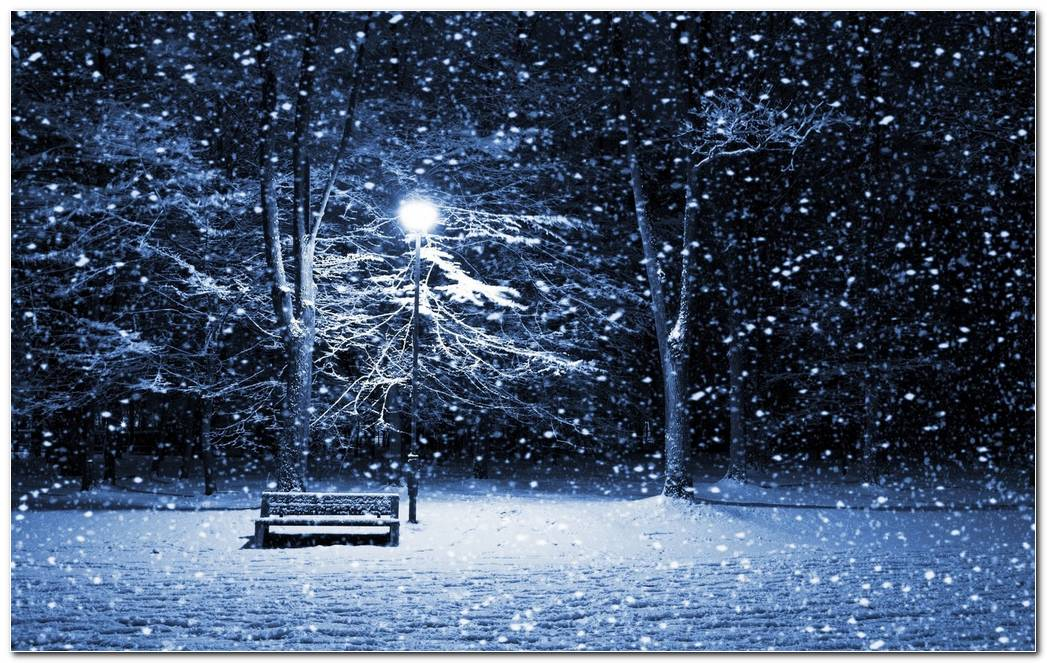 Cool Beautiful Winter Night Nature Wallpaper Background