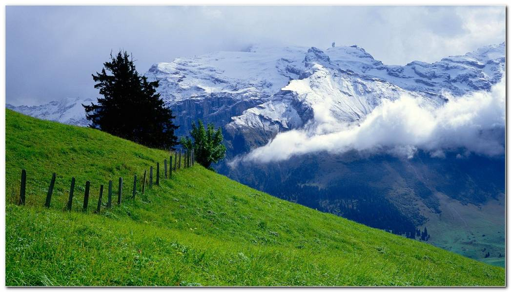 Cool Green Pasture On Mountain Wallpaper Background