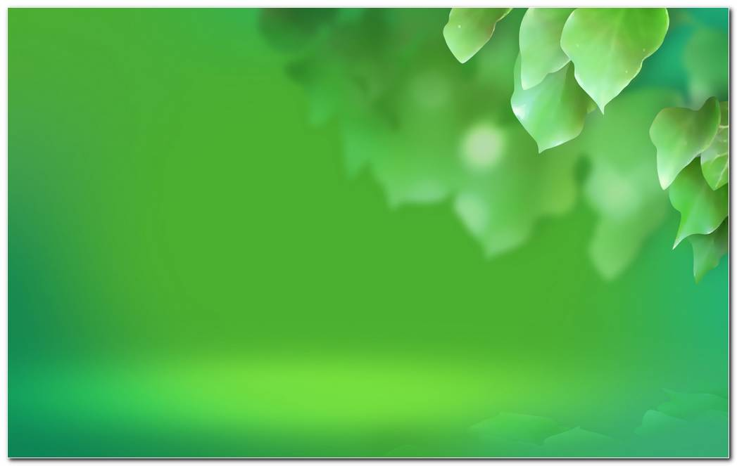 Cool Green Simple Wallpaper