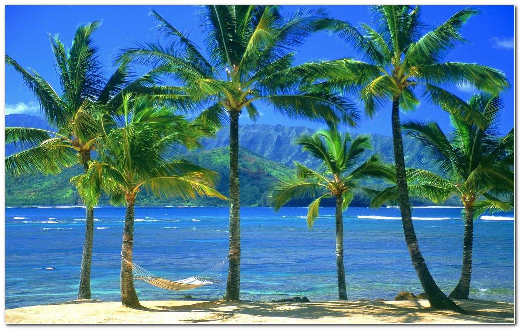 Cool Hawaii Wallpapers Background Image