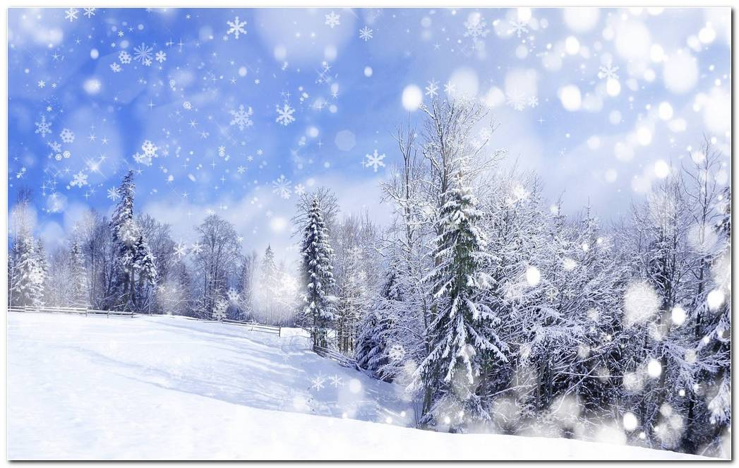 Cool Image Winter Snow Nature Wallpaper Background