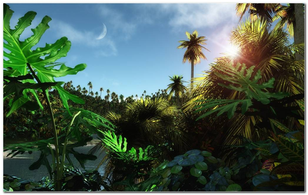 Costa Rica Landscape Wallpapers Image