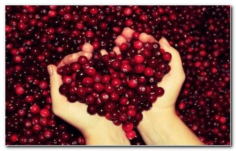 Cranberry Heart Hd Wallpaper