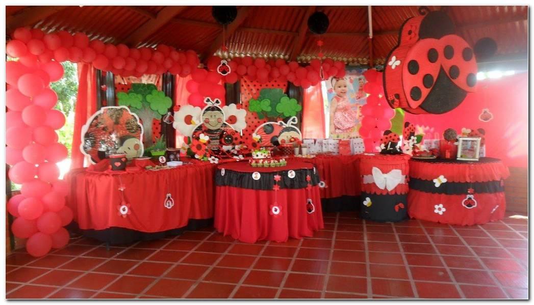 Decoracion De Fiesta De Mariquita