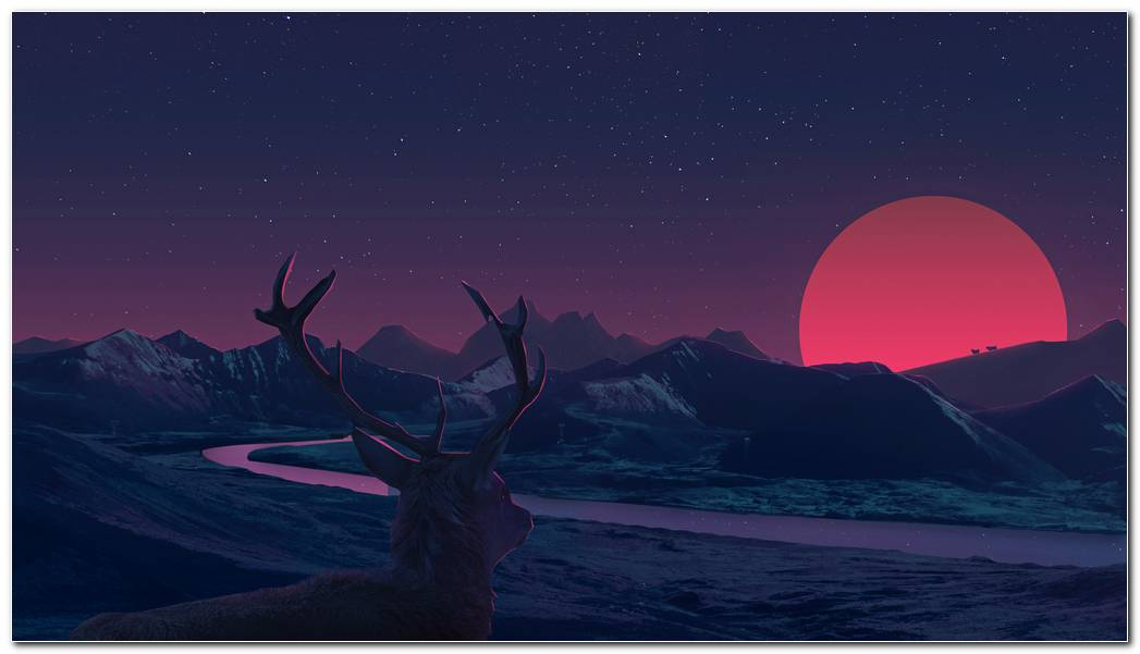 Deer Sunset Anime Wallpaper