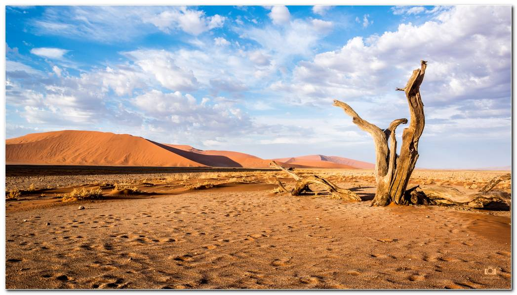 Desert Nature Picture Background