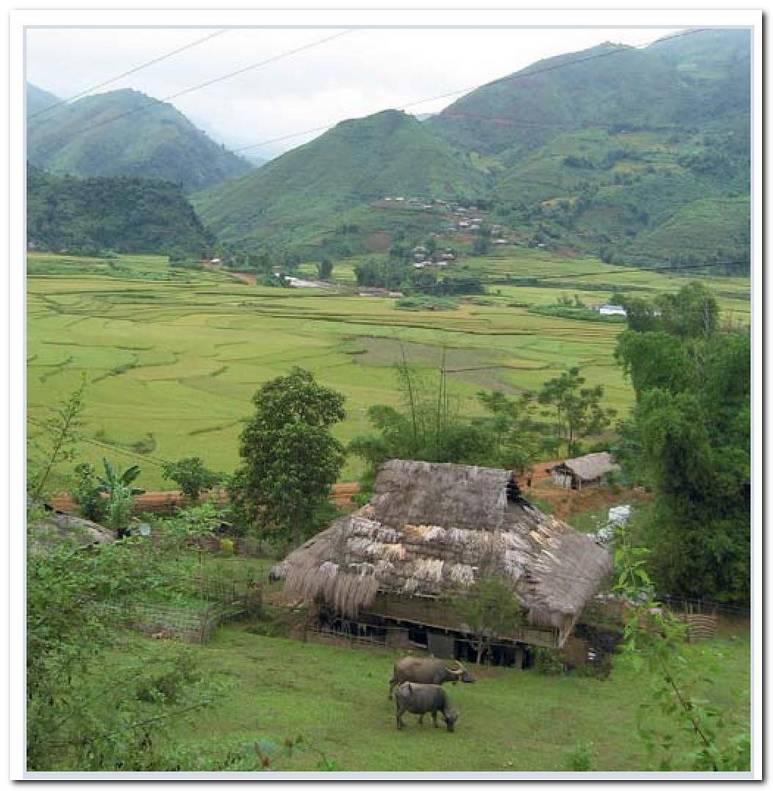 Dise O De Ba O Rural