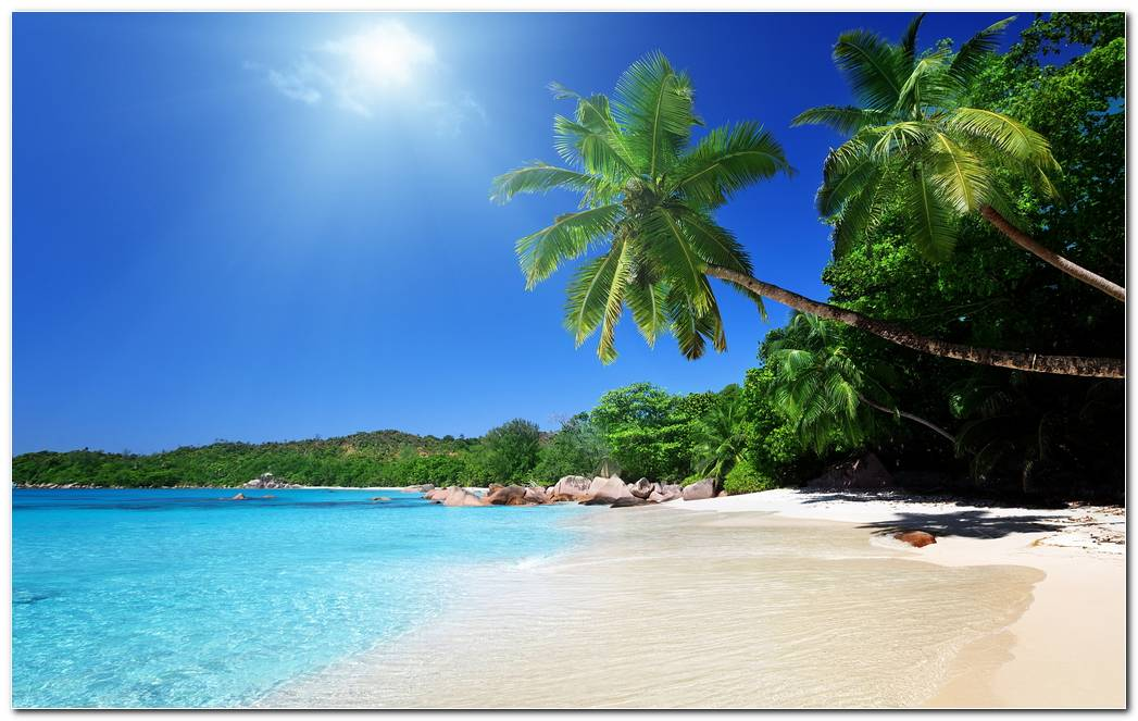 Dream Island Beach Nature Wallpaper