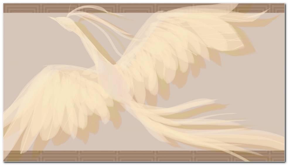 Eagle Background