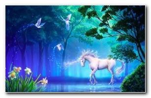 Fantasy Unicorn Wallpapers HD Pictures
