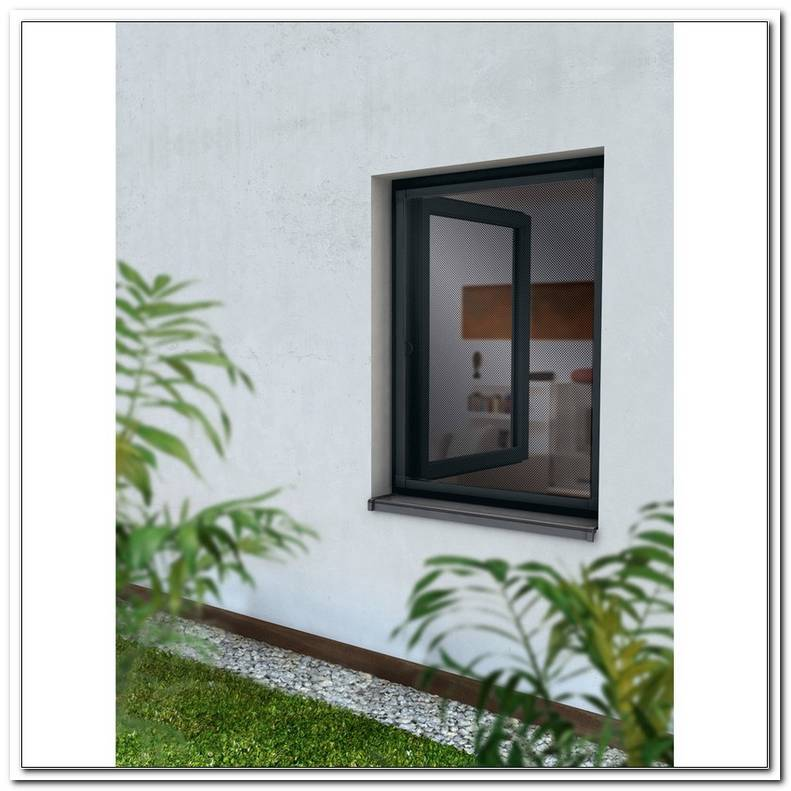 Fenster 80 X 50 Obi