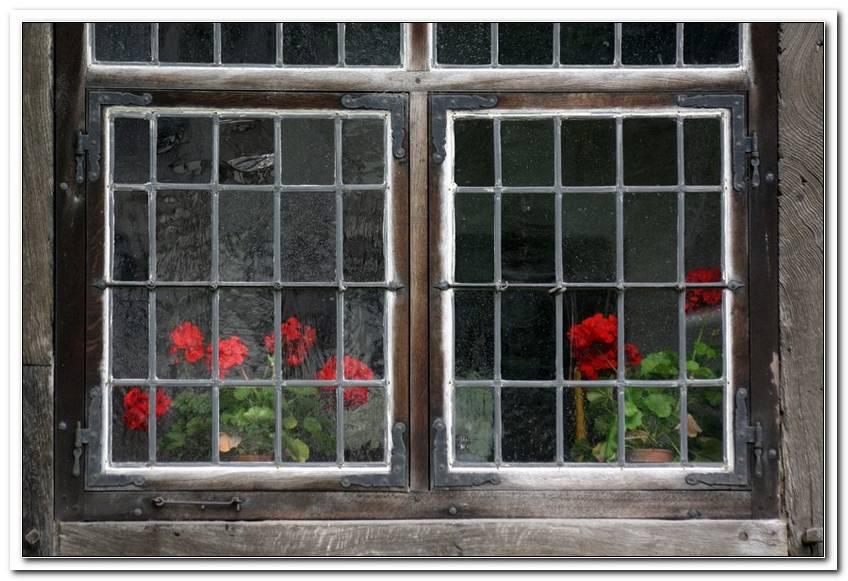 Fenster Einfachverglasung Zul?Ssig