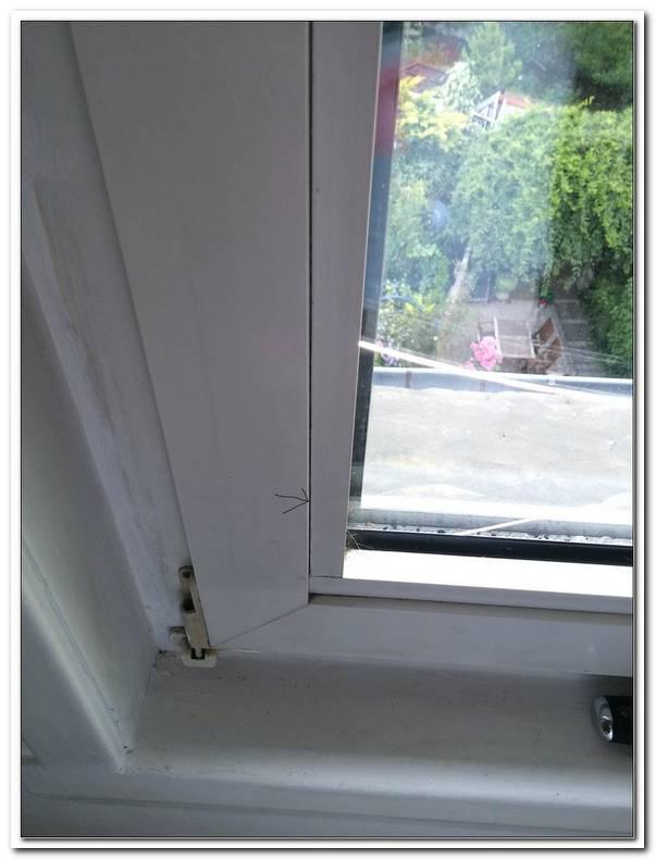 Fenster Erneuern Kfw