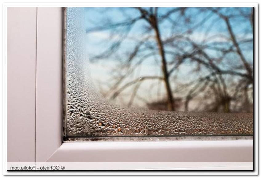 Fenster Gummidichtung Schimmel