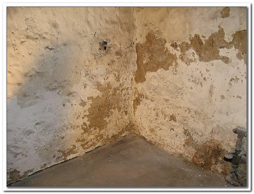 Feuchte Wand Im Keller