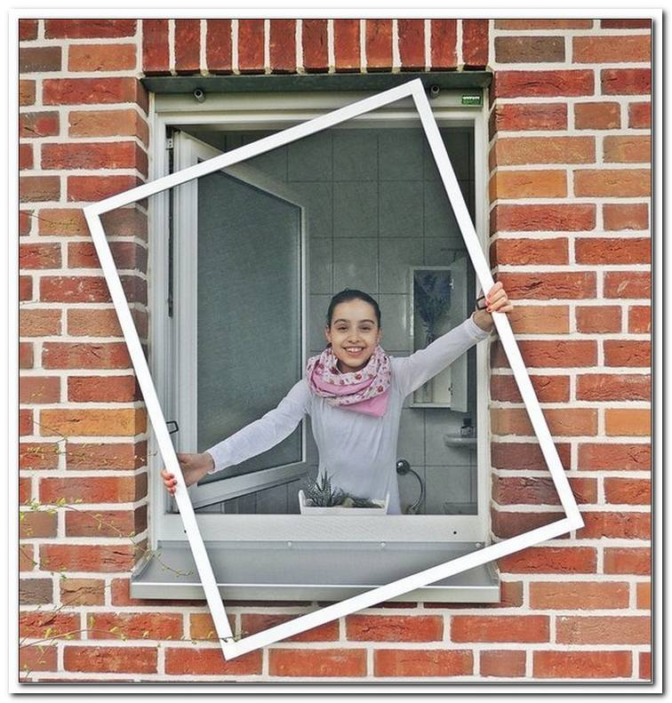 Fliegengitter Fenster 150x150