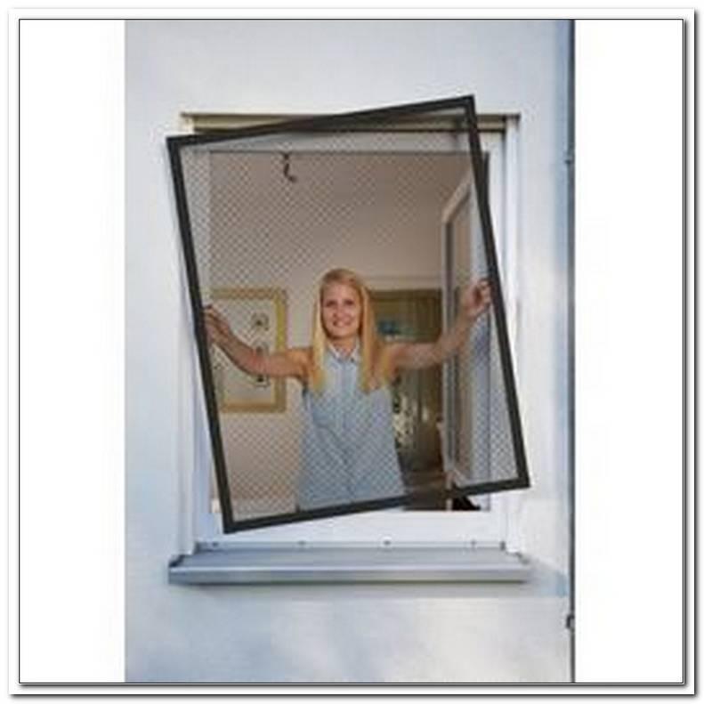 Fliegengitter Fenster Freising
