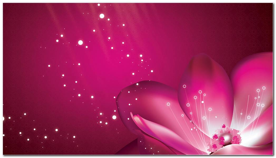 Flower Pink Petals Background Wallpaper