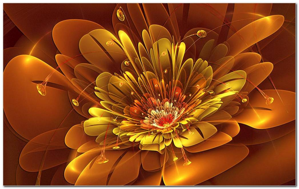Flowers Brown Abstract Wallpapers