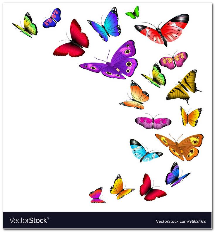 Flying Butterfly Background