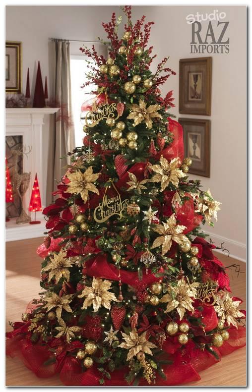 Fotos De Arboles De Navidad