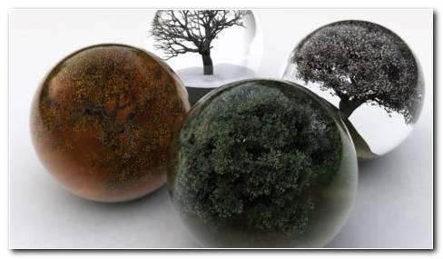 Four Seasons Art HD Wallpaper