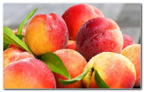 Fruit Peach HD Wallpaper