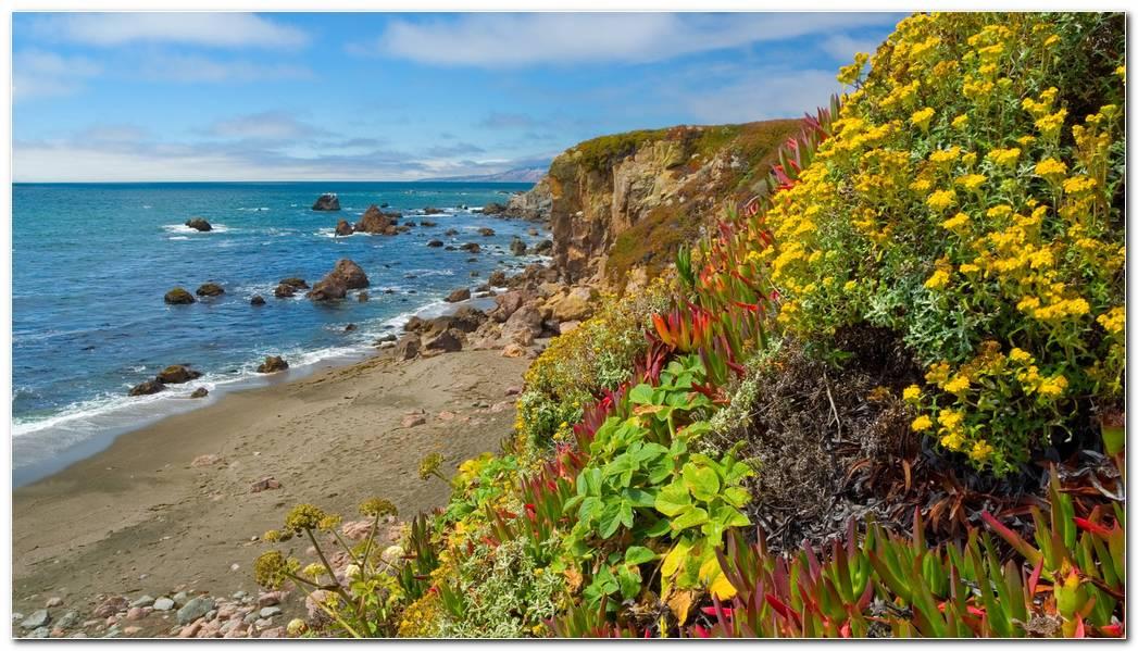 Garden California Wallpaper 1920x1080 Garden California Seaside Bay 1920x1080