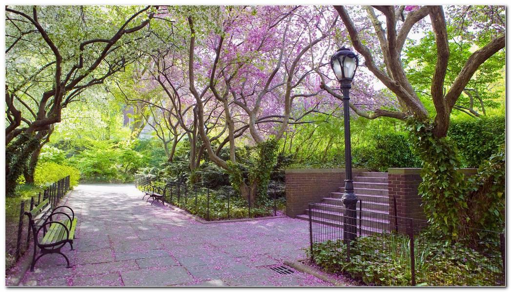Garden Spring Wallpaper 1920x1080 Garden Spring Central Park 1920x1080