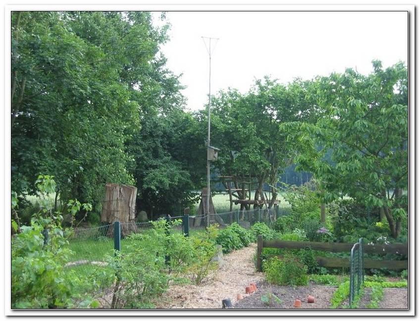Garten Baumhaus