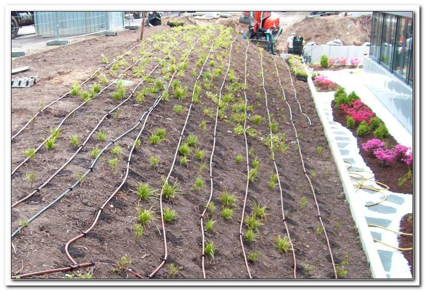 Garten Bew?Sserungssysteme