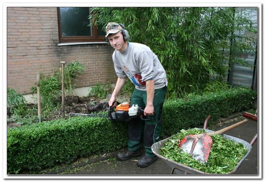 Garten Und Landschaftsbau Ausbildung Gehalt