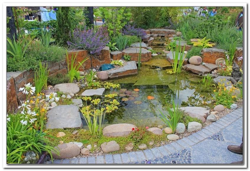 Garten Und Landschaftsbau Koblenz