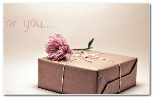 Gift Box Flower HD Wallpaper