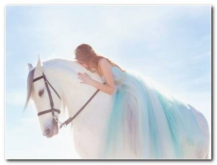 Girl White Horse HD Wallpapers