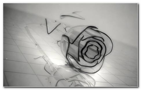 Glass Rose Wallpaper