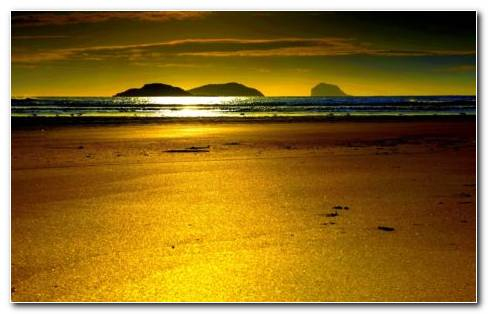 Golden Sand HD Wallpaper